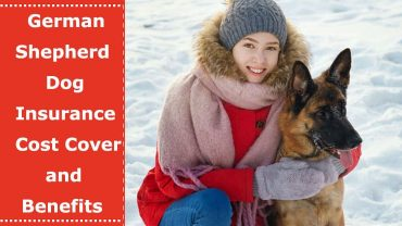 german shepherd dog insurance cost cover