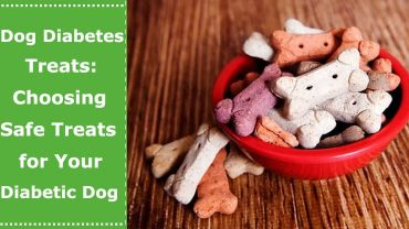 dog diabetic treats