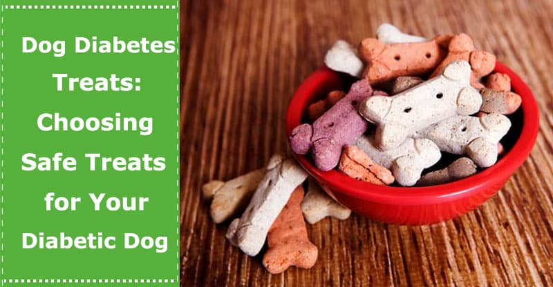 dog diabetic treats