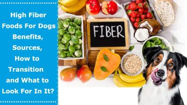 high fiber foods for dogs