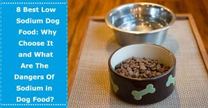 low sodium dog food