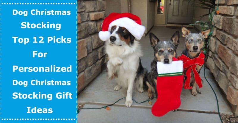 dog christmas stocking