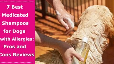 medicated dog shampoo for allergies