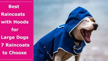 large dog hooded raincoat review